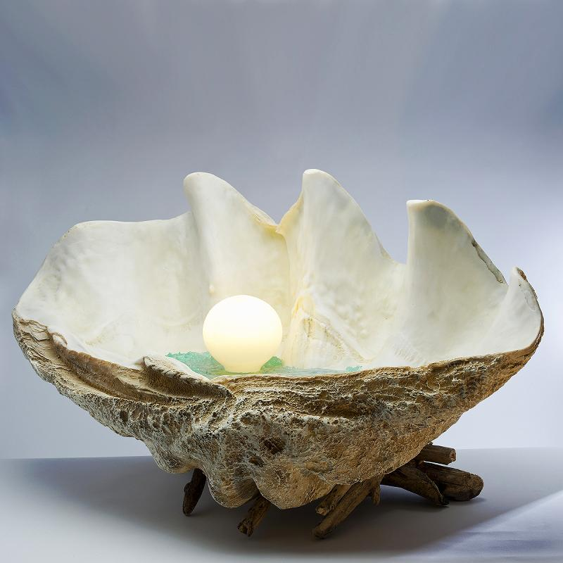 Giant Clam Shell Lamp Shell Table Lamp Beach Lamp